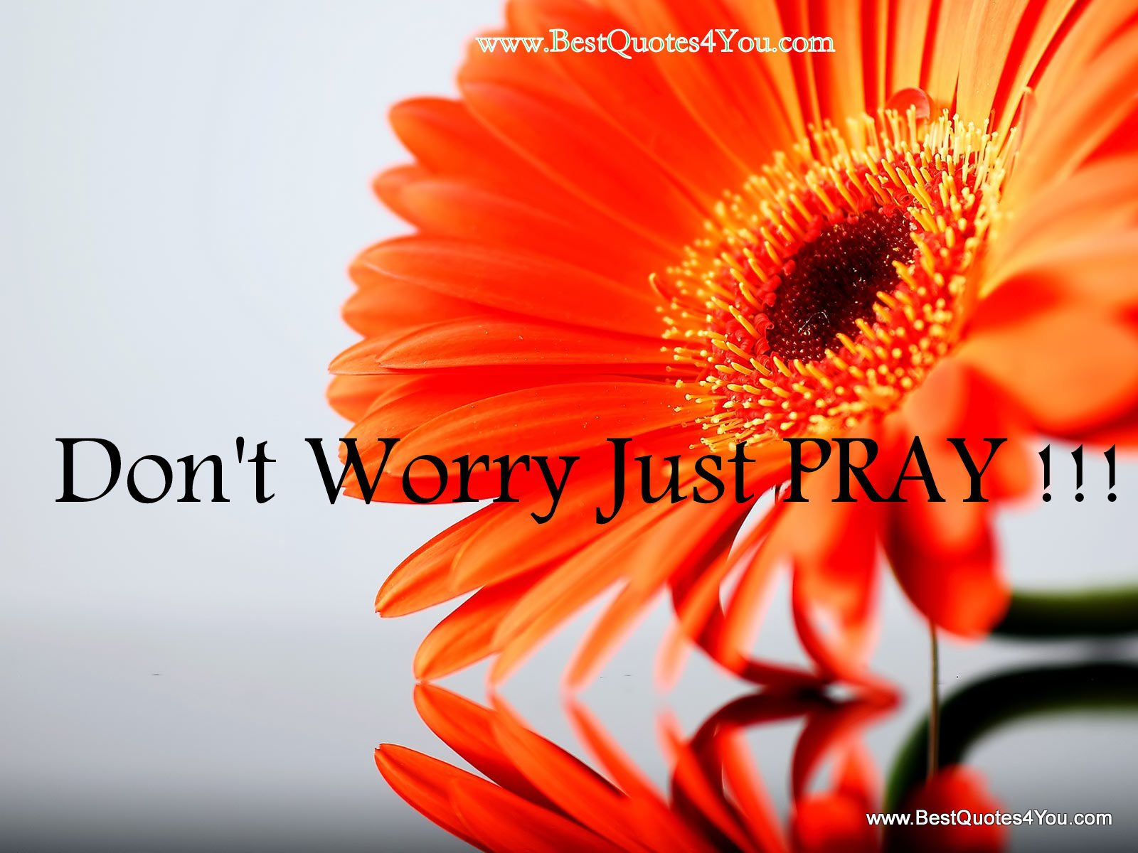 dont-worry-just-pray